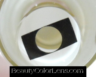 GEO SF-39 CRAZY LENS RECTANGLE BLACK AND WHITE HALLOWEEN CONTACT LENS