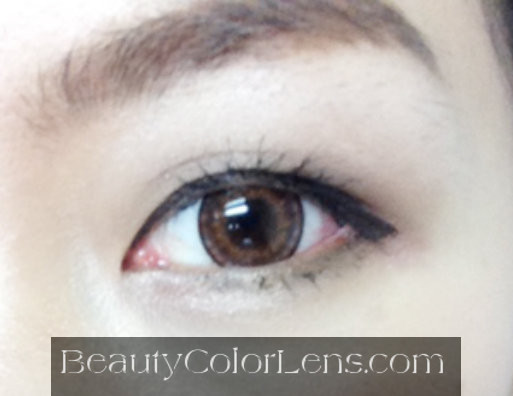 VASSEN SOUL BROWN CONTACT LENS