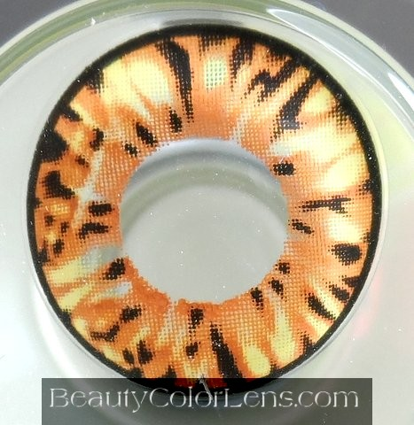 VASSEN CARA BROWN CONTACT LENS