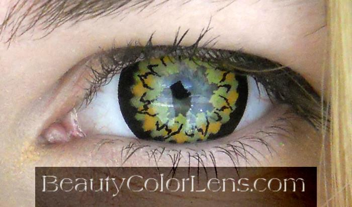 VASSEN MAKI GOLD BROWN CONTACT LENS