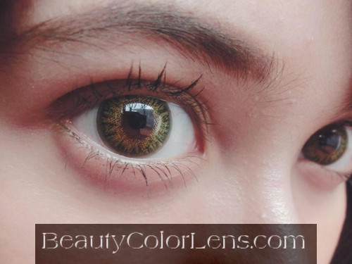 GEOLICA CELINE GOLD FL-D34 BROWN CONTACT LENS